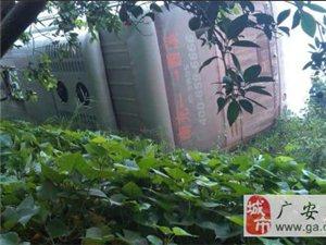 广安岳池同兴镇又发生一起车祸,悲哀