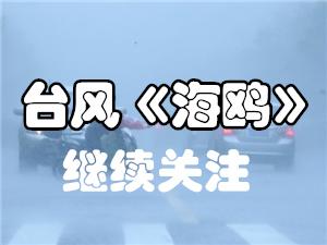 """关注台风""""海鸥""""最新动态"""