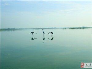 2014.08.23二八歌户外营呼兰河口湿地一日游随笔――二八歌艺无止