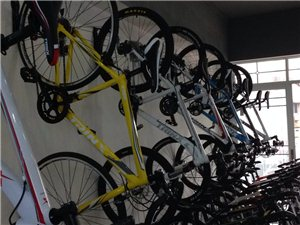 千里达山地自行车澳门网上投注平台店运营