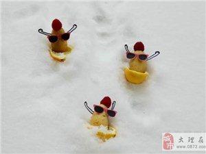 土豆party