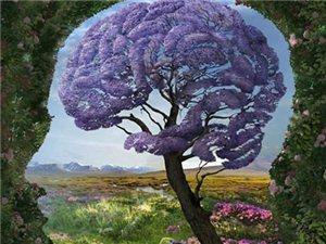 关于大脑秘密的20个已知事实,你知道吗?