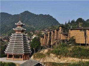 国庆免费旅游景点(天峨山云海与侗族鼓楼的融合美景)