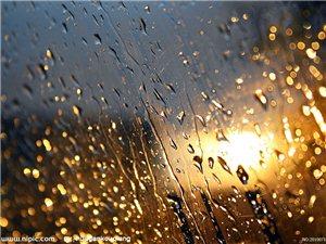 雨――生命