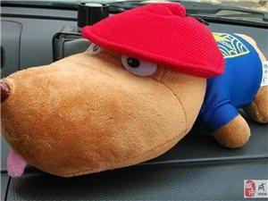 车享送的酷炫的吐舌狗,跟我一样酷酷的呢