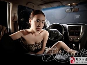 豹纹车模美女