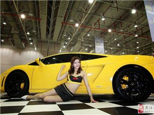 高清韩国车模