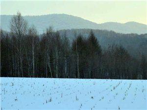 家乡的四季山野