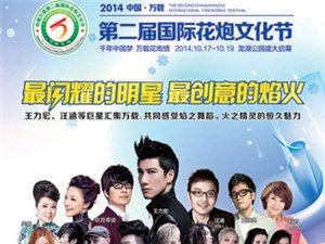 2014年中国?万载  第二届国际花炮文化节