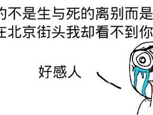 【家居真相】空气净化器 中国籍产物