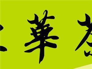 洋浦东华茶庄