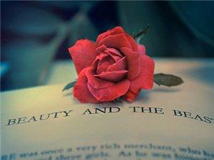 """【爱情】是一个寻找""""最佳对手""""的过程"""