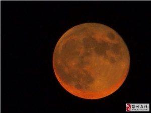 拍滨州今晚的月全食