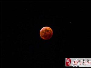 """日照""""红月亮"""""""