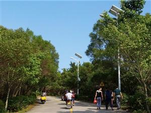 彭水富民光伏分布式团队光伏路灯安装案例