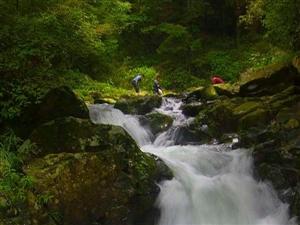 剑河八万山——少了野猪老虎还有水和峡谷