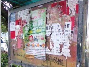 澳门太阳城平台网大街上的牛皮癣实在惨不忍睹!