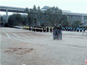 2014年朋口中学第十三届田径运动会【图】