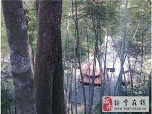 佛教旅游胜地—神坡山