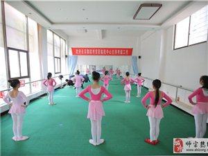 美馨舞蹈培训:中国舞七级常规课教学图集