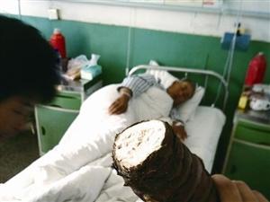 """【岩城快讯】龙岩一老人吃""""芋头""""被毒进医院 原是海芋不可食"""