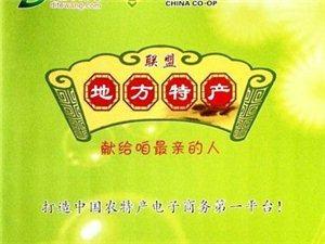 """""""地特网""""成功亮相丝绸之路供销展销会暨""""一县一品""""展销会"""