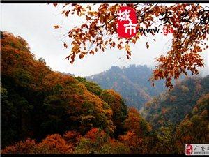 相�s光�F山,抒情�f山�t-2014(10月-11月1日)