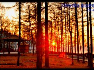 初冬到向阳拍夕阳