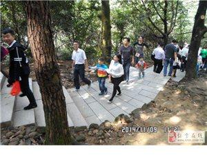 宝安周边澳门新葡京官网老乡相聚福永凤凰山森林公园