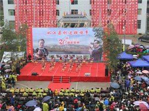 刚边壮族乡隆重举行建乡30周年庆典