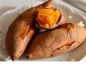 从没人告诉我红薯可以这么吃