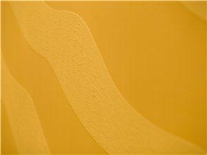 OW硅藻君硅藻泥