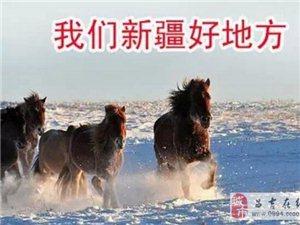 【小伙伴��都震�@了】100年后的新疆到底有多牛?
