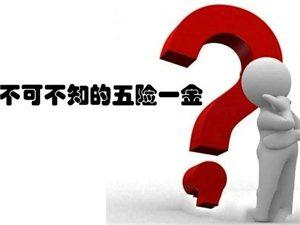 【七海微讲堂—社保篇】离职后五险一金怎样处理呢?