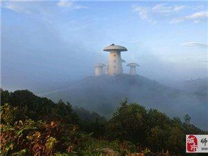 金沙网站:菌子山是什么?