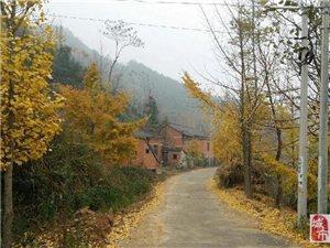 行走在乡间的小路上,感受大自然独特的风景