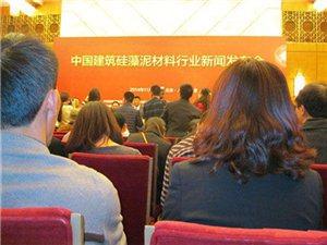 中国建筑建筑装饰装修材料协会在人民大会堂揭牌