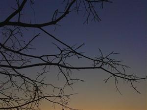 远方的家-金沙网站拍摄(贴四)