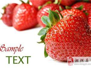 超棒!养颜健脾吃草莓-新鲜草莓批发