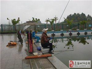 """2015年""""雪舞杯""""蓬溪县分站赛比赛公告"""