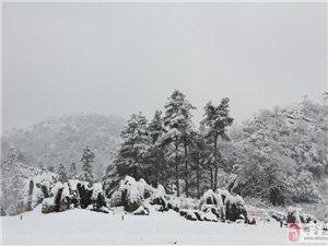金沙网站旅游:菌子山的冬天