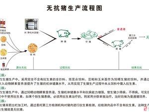 酵素菌效果展示之一哈尔滨市信生家禽有限公司酵素养殖投入产出表