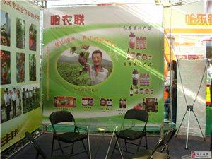 宾县三莓果业合作社绿色产品展示