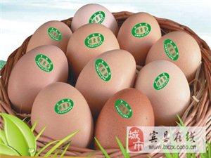 京福龙 酵素鸡蛋产品演示