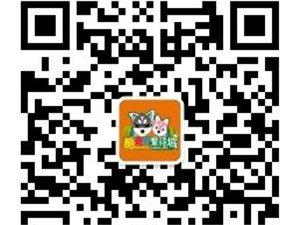 威尼斯人注册_明升网址首家儿童专属大型体验商场——-酷克奇童话城