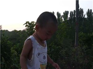 """绛县首届""""金话筒杯""""明星宝贝网络评选大赛1104――-高晨皓"""
