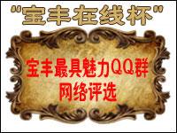 """2014""""宝丰在线""""杯最具魅力QQ群网络评选大赛"""