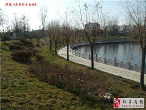 鄢陵冬季千��湖