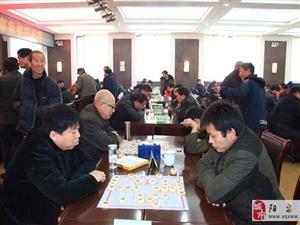 揭秘澳门星际象棋锦标大赛内幕
