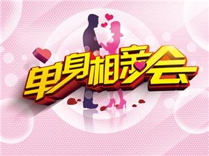 新乐首届电视网络相亲大会活动